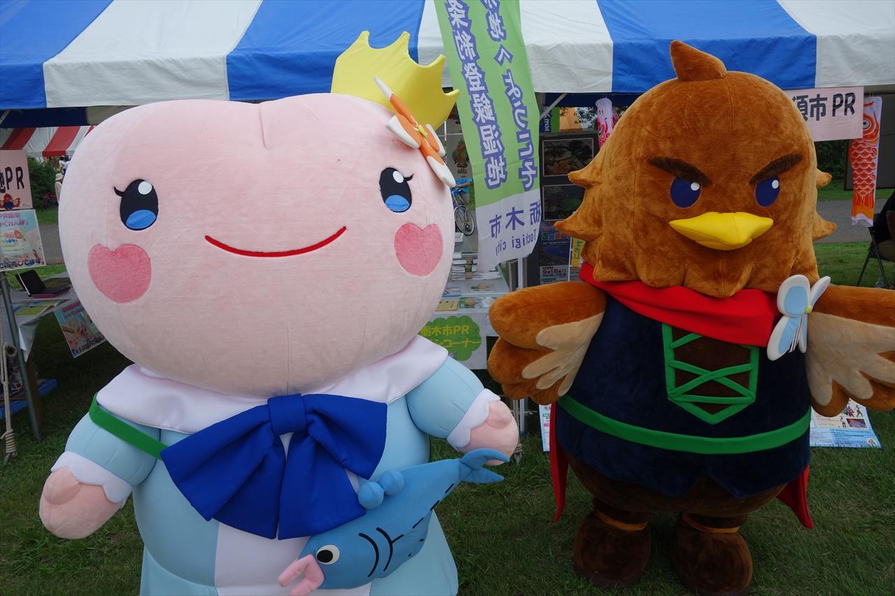 わたらせ遊水地フェスティバル2016で熱気球に乗ってきたよ