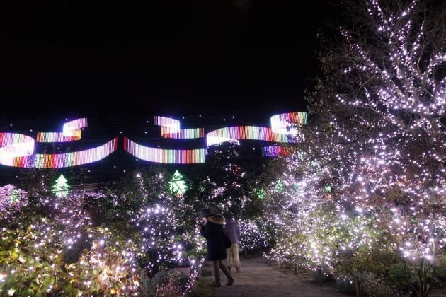 あしかがフラワーパークのイルミネーション(クリスマスファンタジー)