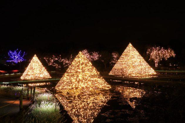 池に浮かぶピラミッドのイルミネーション