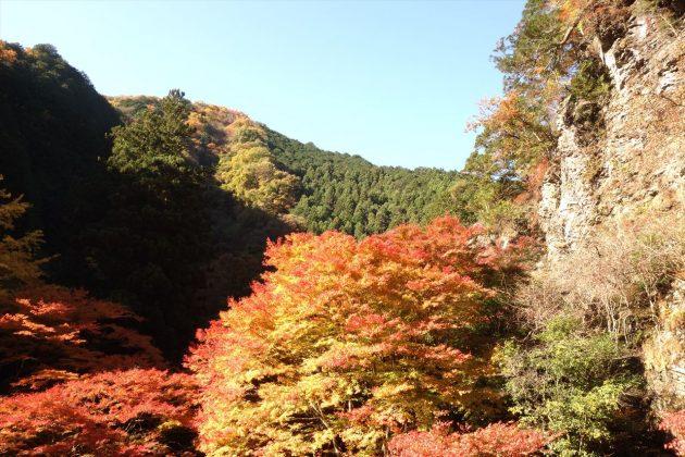 蓬莱山の紅葉写真7