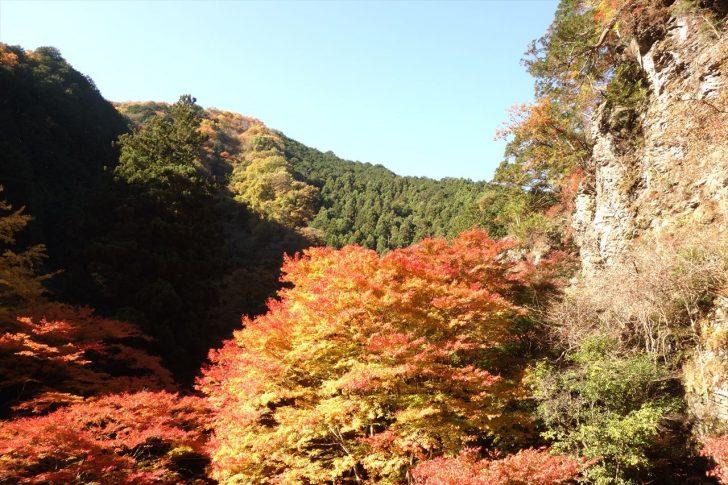 蓬莱山の紅葉写真
