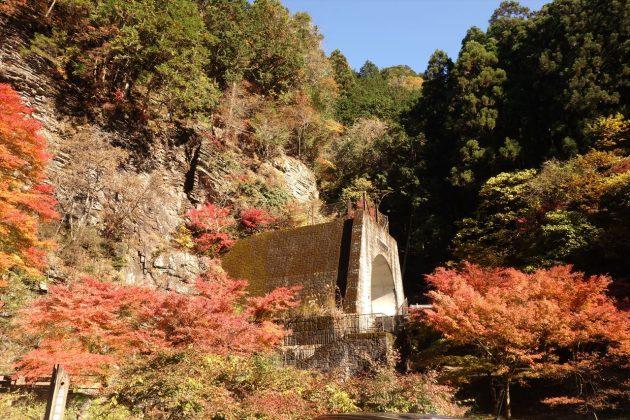 蓬莱山の紅葉写真4