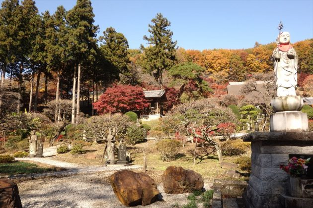 金蔵院の紅葉写真6