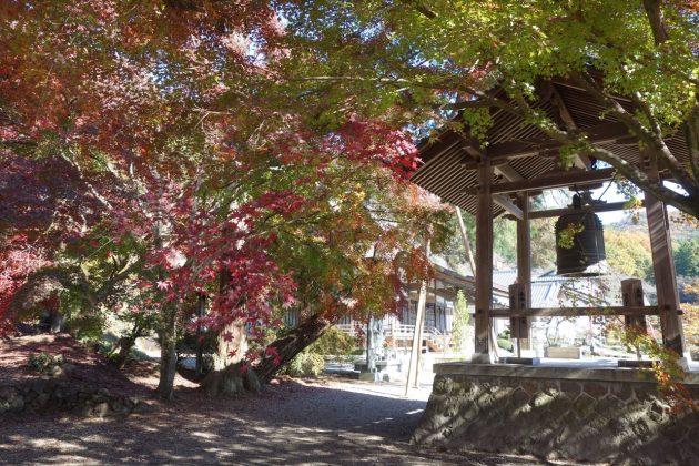 金蔵院の紅葉写真5