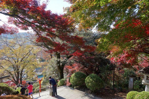 織姫神社の紅葉写真3