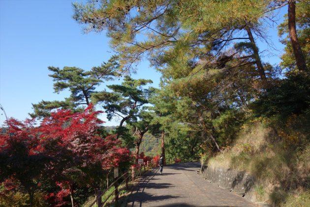 織姫公園ともみじ谷の紅葉写真1