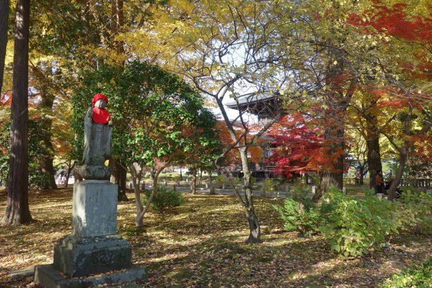 鑁阿寺の紅葉写真5