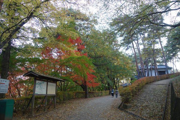 栗田美術館の紅葉写真
