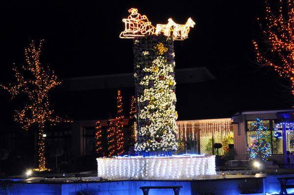 【栃木市】とちぎ花センターでクリスマスファンタジーが開催されます