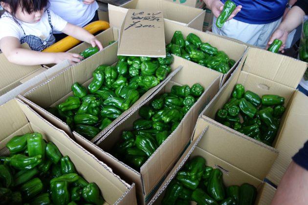 県南市場の年末特別開放の様子9