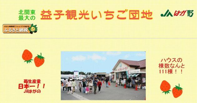 JAはが野益子観光いちご団地