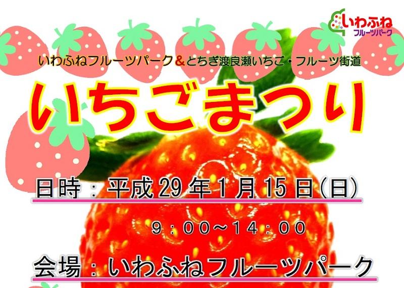 【栃木市】いわふねフルーツパークで「いちごまつり」が1月15日に開催されます