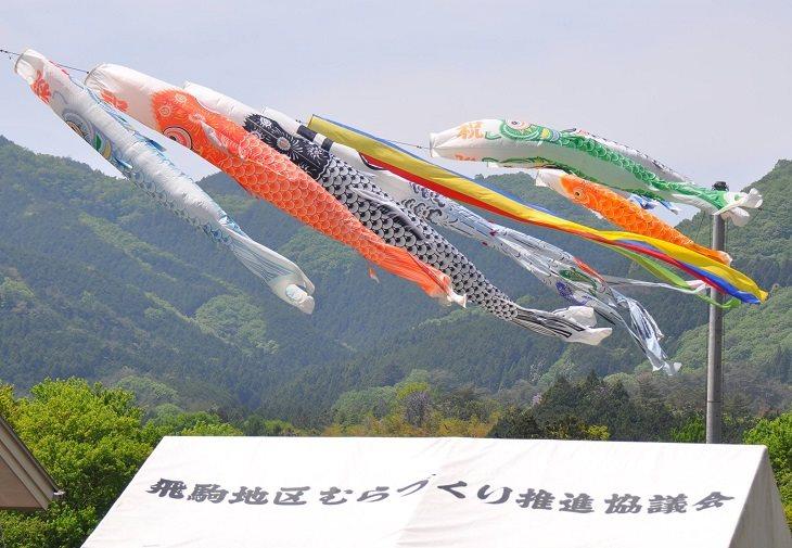 【佐野市】根古屋森林公園で「鯉来まつり」が開催されます