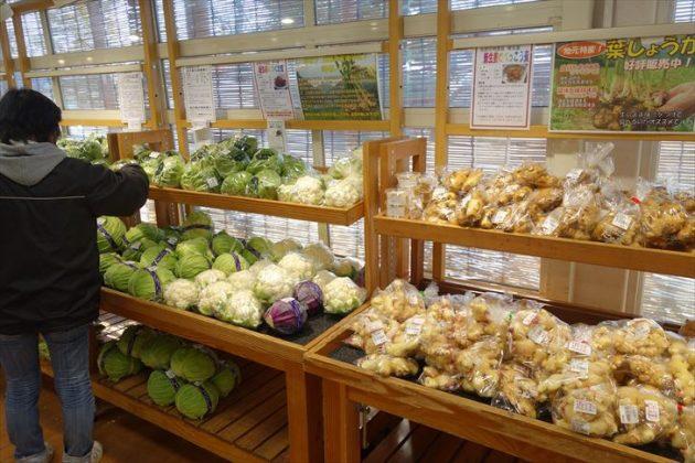 どまんなかたぬまの野菜売り場