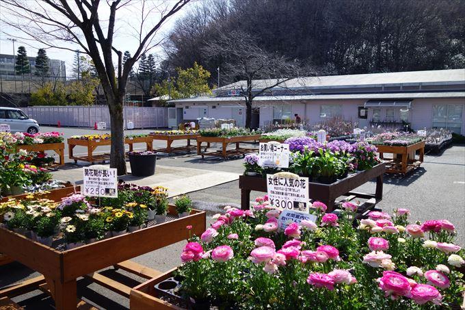 外の園芸コーナー