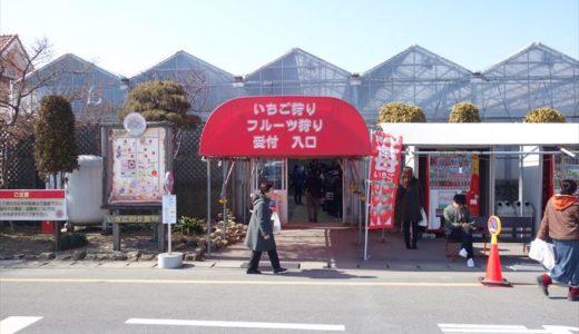 栃木県にある「いちごの里」を楽しもう!役立つ情報をまとめてみました