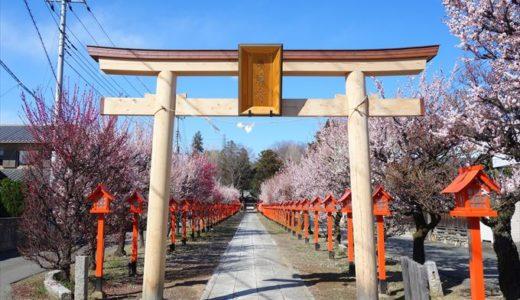 朝日森天満宮|菅原道真公を祭った「なで牛」と「梅」の天神様の見どころをチェック