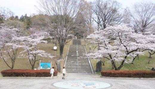 佐野市の桜の名所「嘉多山公園」を紹介します!写真や見頃時期をチェック