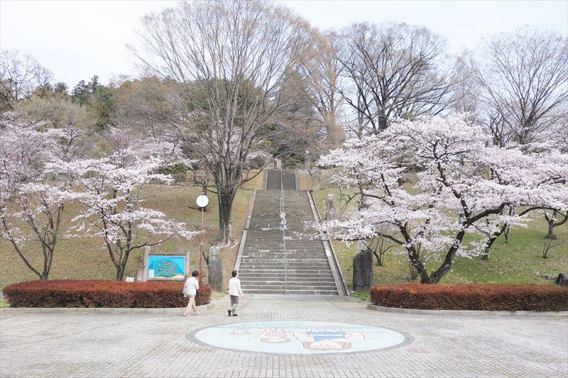 嘉多山公園の桜(中央広場付近)
