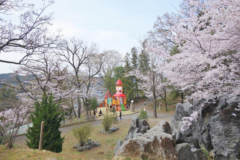 嘉多山公園の桜(ローラー滑り台付近)