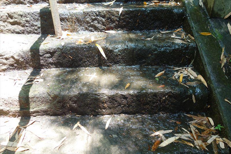 湧水があふれている階段