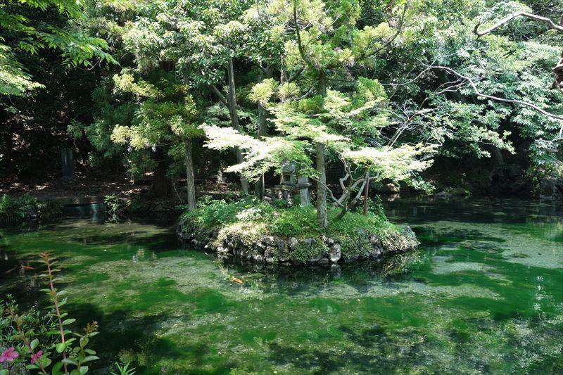 出流原弁天池の小島