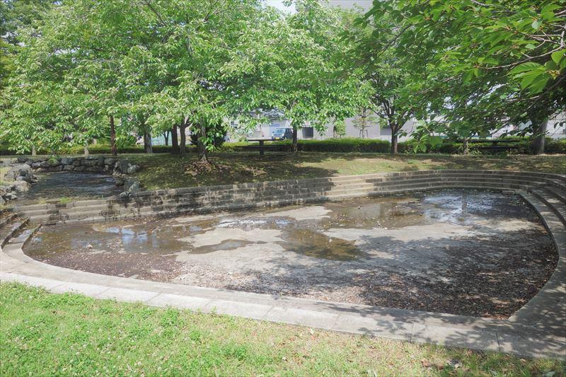 朱雀中央公園の水遊び場(池)