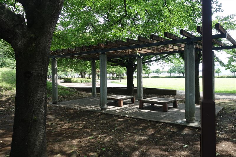 朱雀中央公園の芝生広場付近の休憩スポット