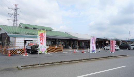 佐野市の観光農園「アグリタウン」ってどんなところ?写真たっぷりで紹介します