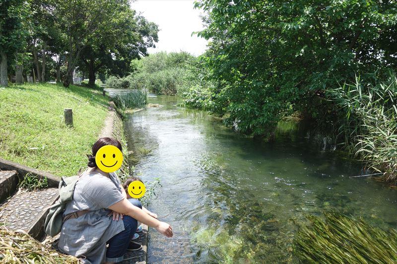 菊川第4公園を流れる清流
