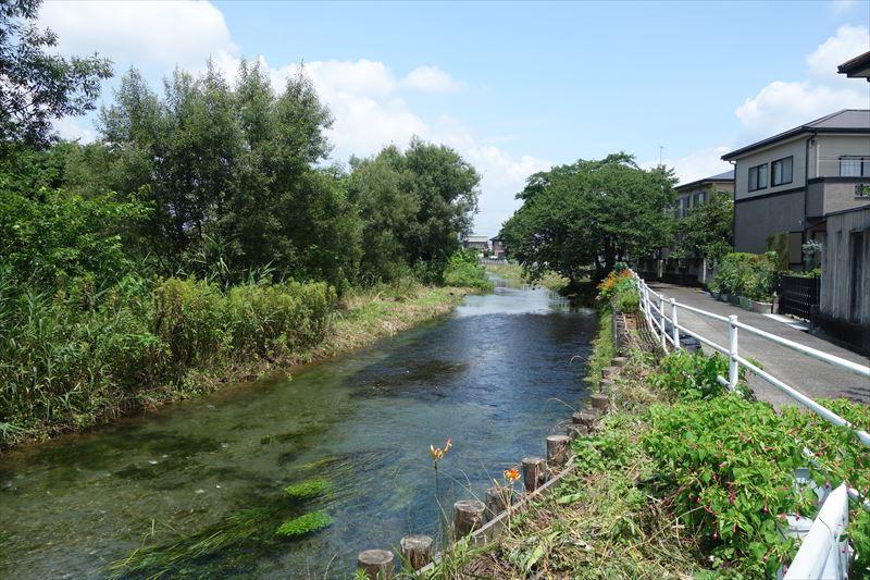 菊川第4公園の隣を流れる菊沢川