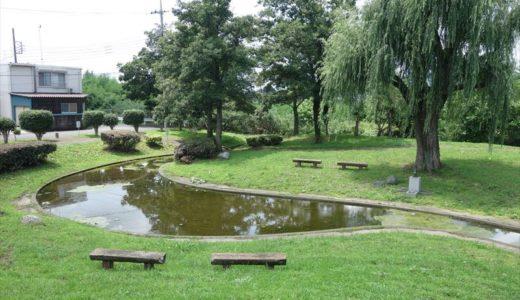 【公園レポ】菊川第4公園|ザリガニやメダカと触れ合える佐野市の水遊びスポット