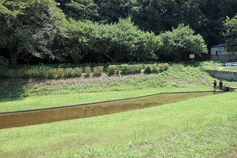 残りの水上アスレチックの完成予定地