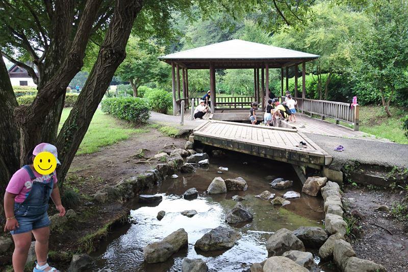 小山総合公園のバーベキュー場ちかくの水辺