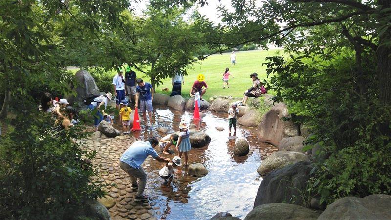 佐野市こどもの国の水遊び場