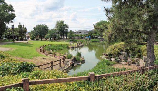 【公園レポ】西部中央公園|大きな池と地下水をくみ上げて流す水遊び場が魅力の公園
