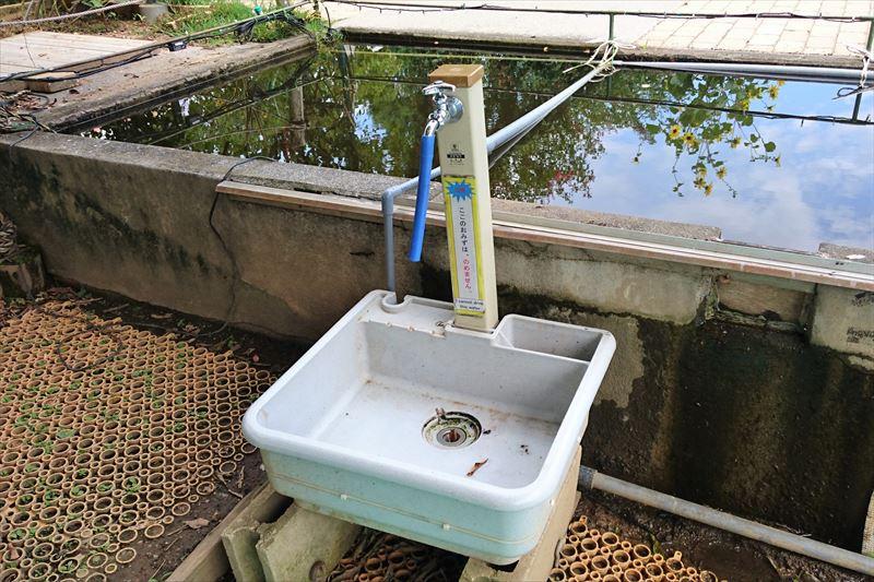 ウォーターキャノンエリアの水洗い場