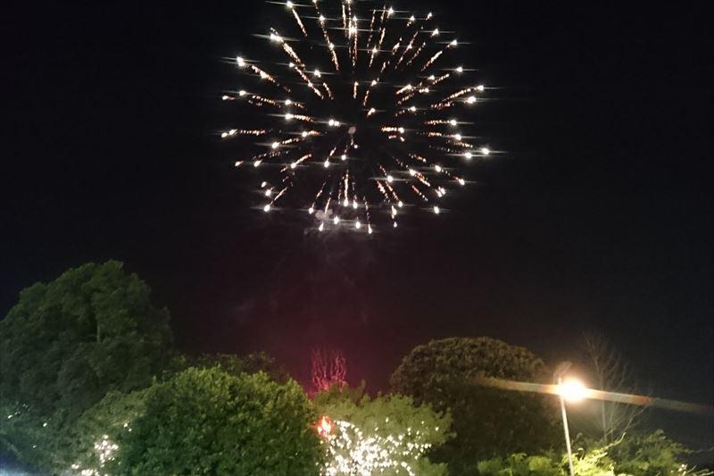 あしかがフラワーパークの打ち上げ花火