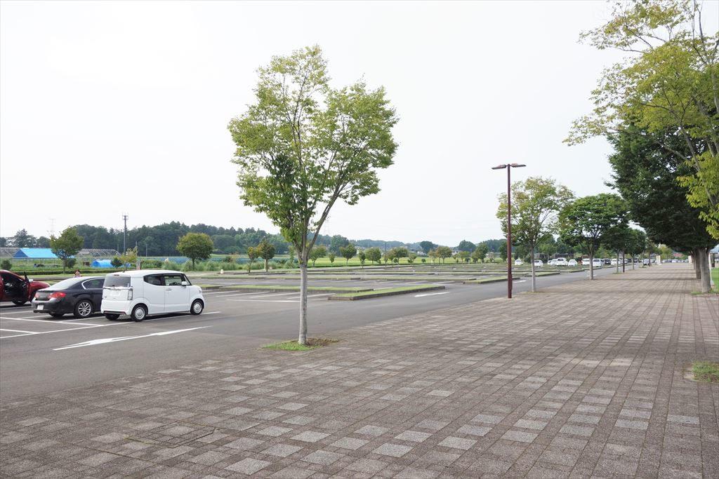 なかがわ水遊園の駐車場