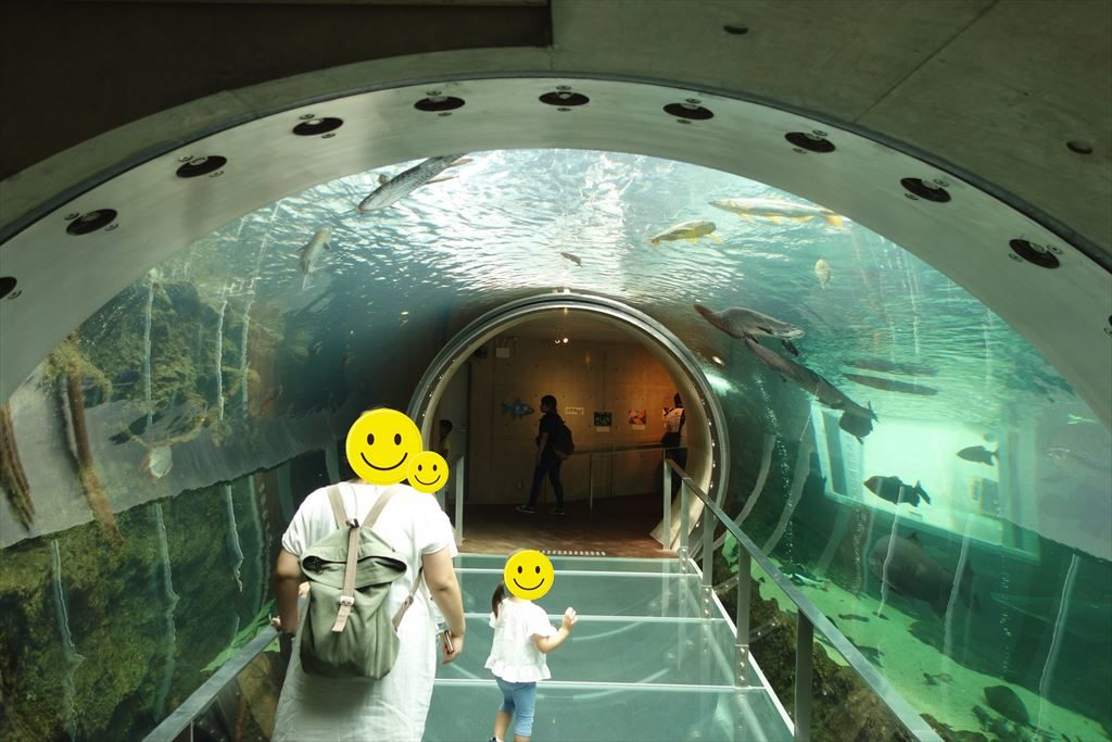 アマゾン大水槽のトンネル
