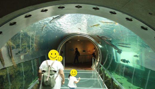 【体験レポート】なかがわ水遊園|見て触って楽しめる栃木唯一の水族館