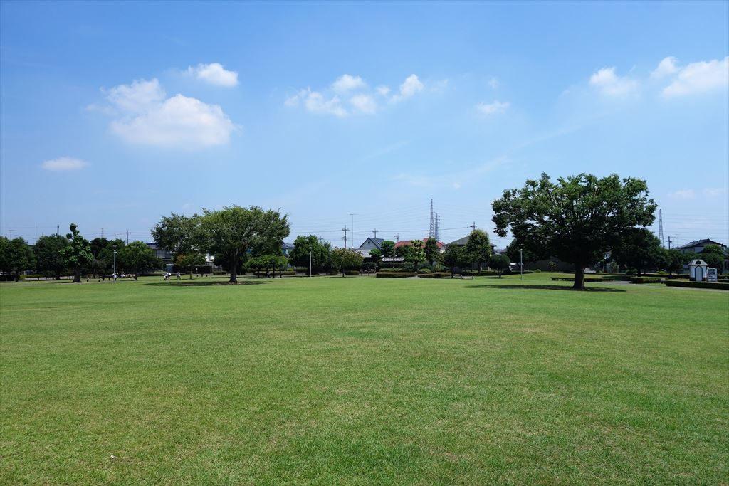 城南公園の芝生広場