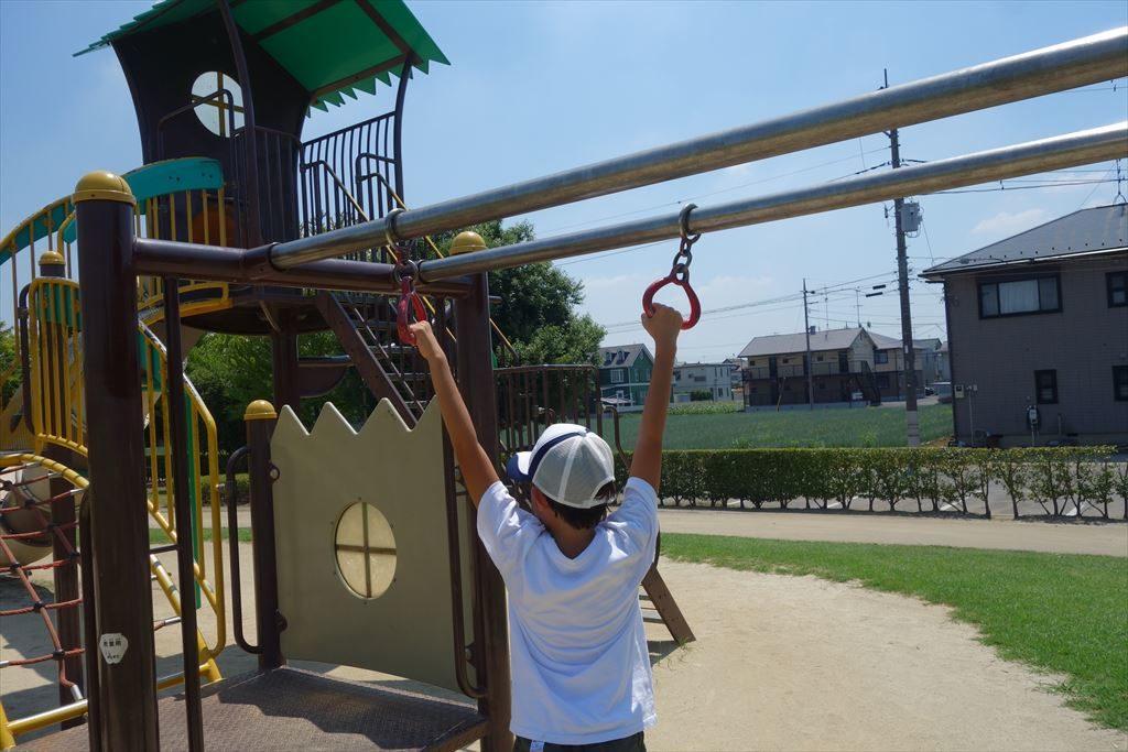 チューブ滑り台が付いた城南公園のコンビネーション遊具(スライド式うんてい)