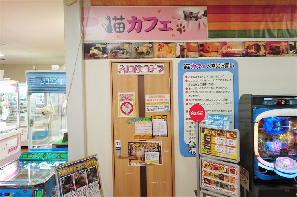 アミパ猫カフェの入口