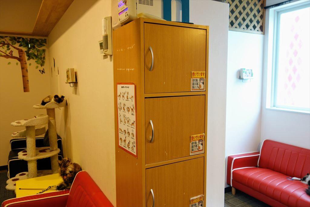 アミパ猫カフェの収納棚