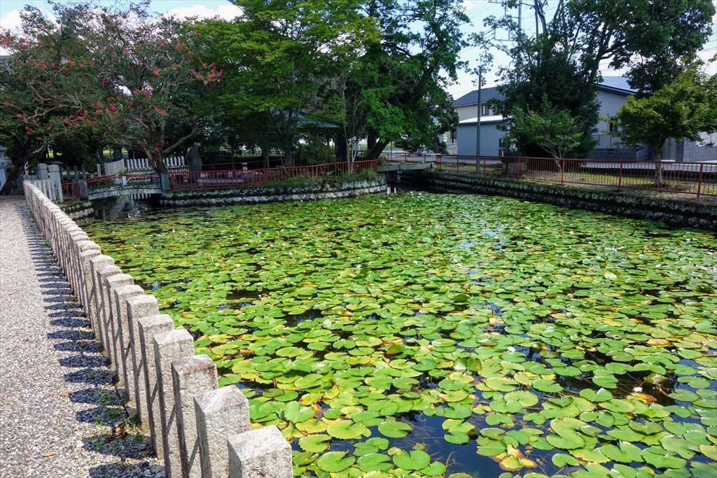 人丸神社の神池