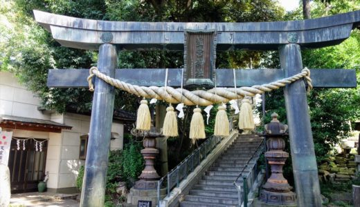 【御朱印巡り】佐野市の「星宮神社」を参拝!境内と社殿の様子を写真たっぷりで紹介します