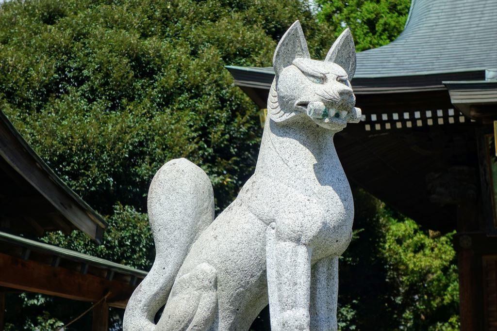 一瓶塚稲荷神社の狛狐