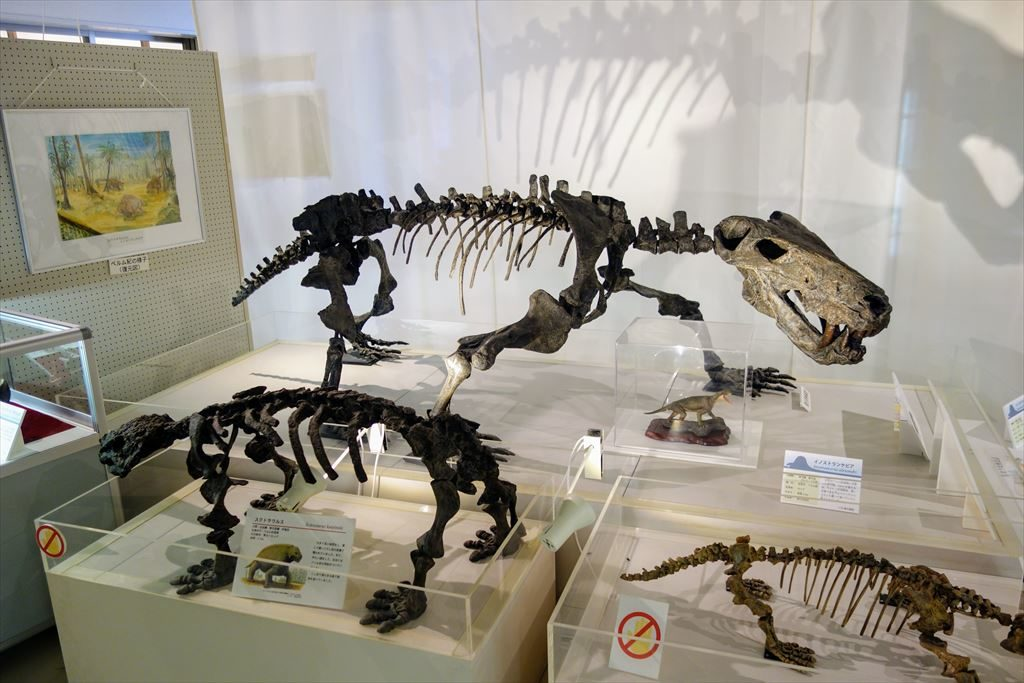 葛生化石館に展示してあるイノストランケビアの全身骨格