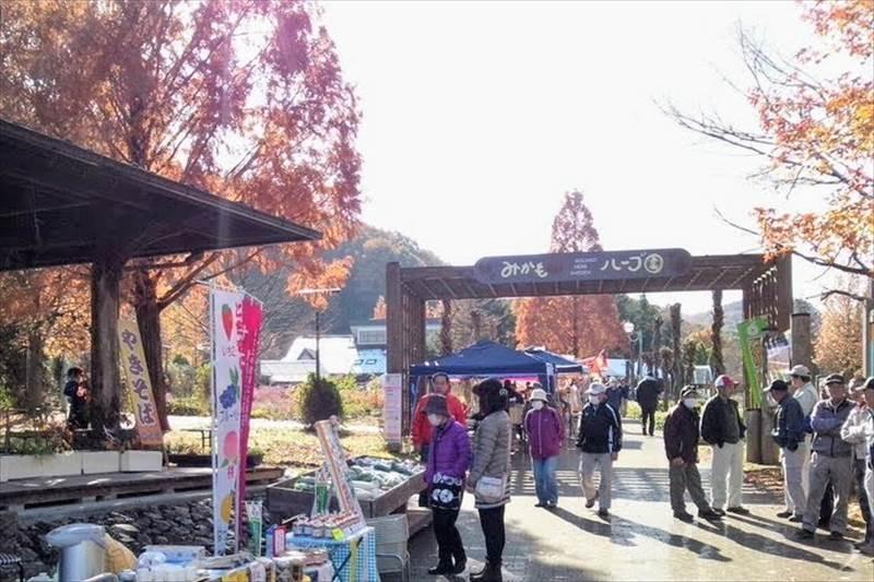 万葉柚子収穫祭